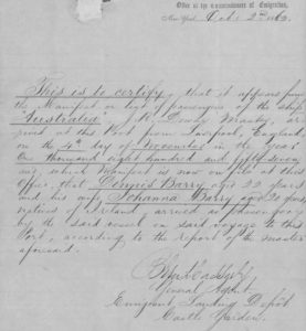 Castle Garden record pertaining to the arrival of Johanna and Denis in New York (NARA/Fold3)