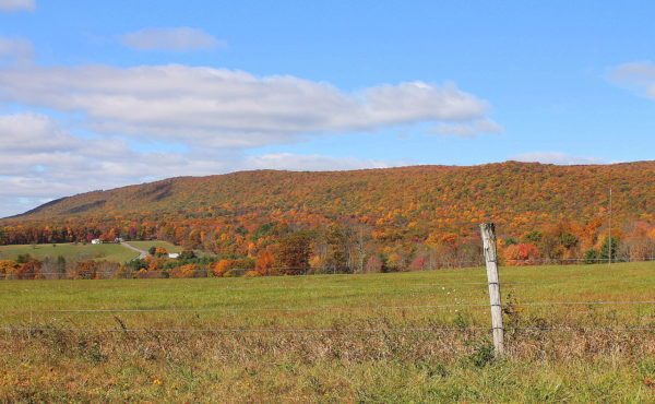 Buck Mountain, where John O'Donnell spent time working as a coal miner (Image: Jakec)