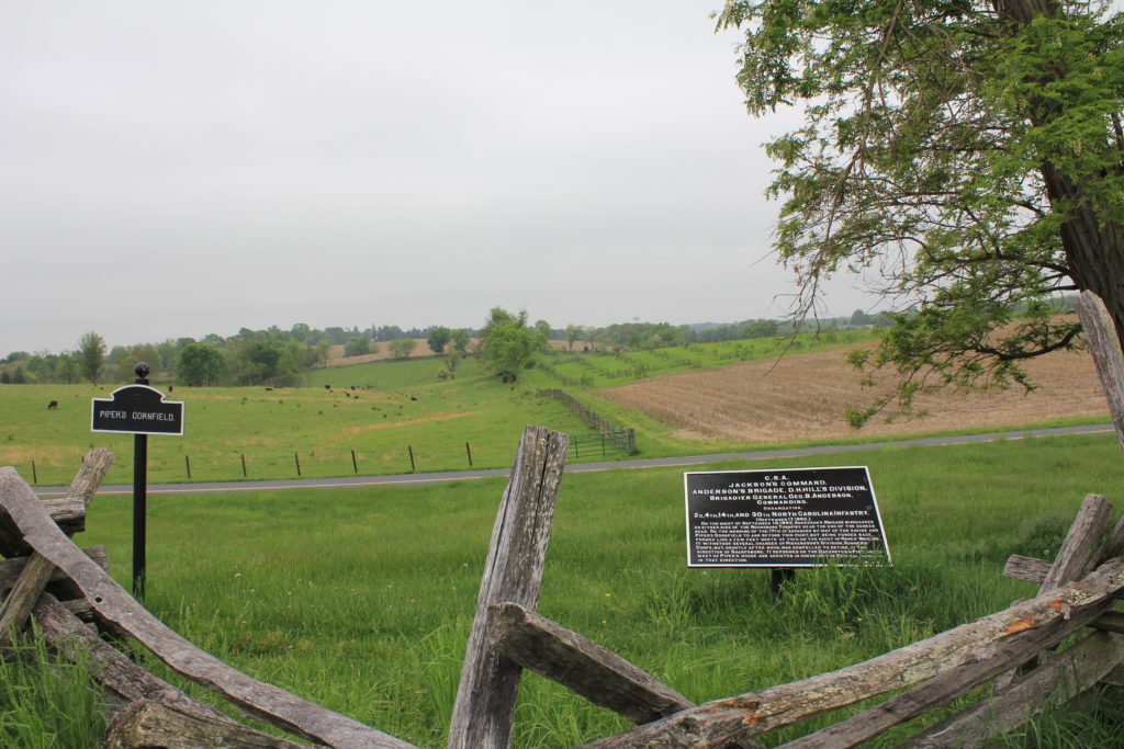 24. View of Pipers Cornfield behind the Sunken Lane, which held Confederate reserves and also artillery which fired on the Irish Brigade during its advance.